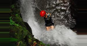 Costa Rica Spider Monkey Canyon