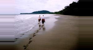Costa Rica Caribbean Horseback Riding