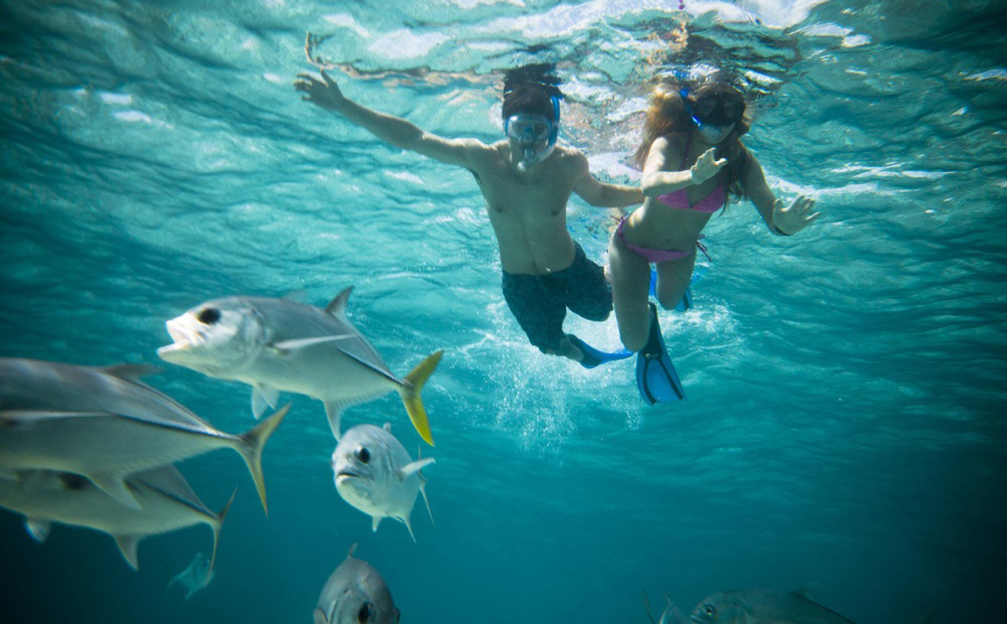 Caye Caulker Sail and Snorkel