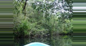 Guatemala Biotopo Chocón Machacas
