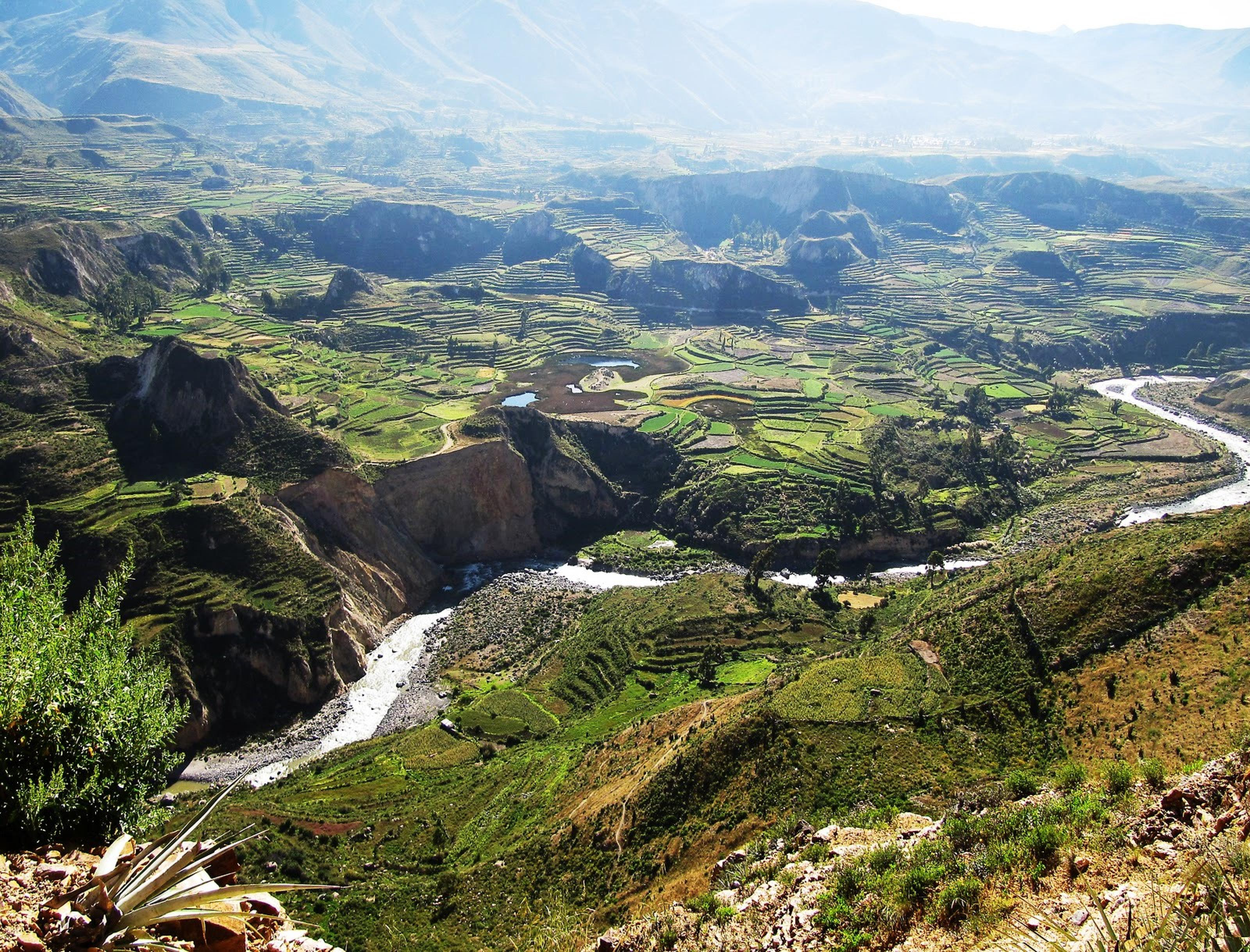 Full-Day Colca Canyon