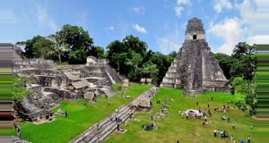 Guatemala Collective Tikal