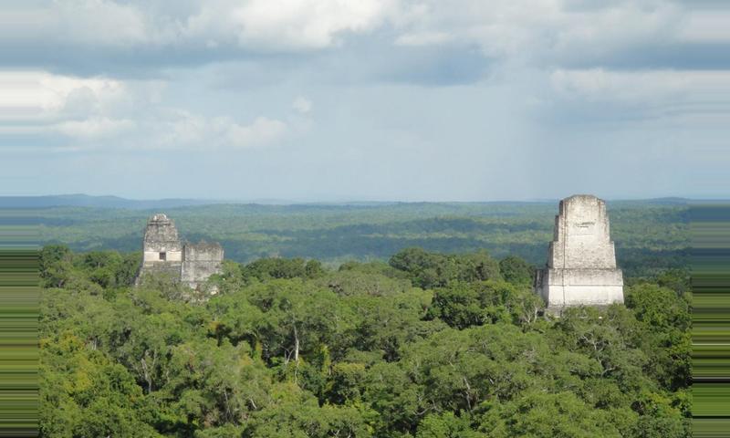 Collective Tikal