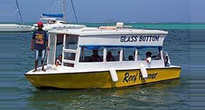 Belize Glass Bottom Boat Tour