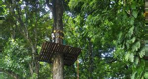 Costa Rica High Ropes Course and Ceiba Rappel Tour
