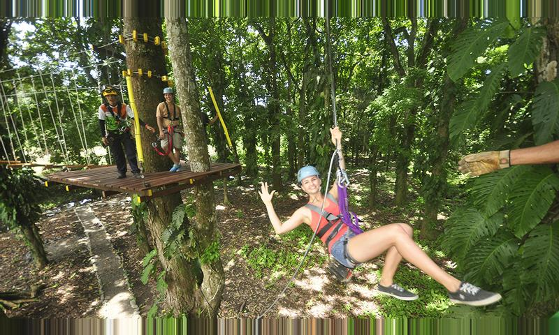 High Ropes Course and Quick Jump Tour