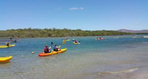 Costa Rica Kayak por el estuario Tamarindo