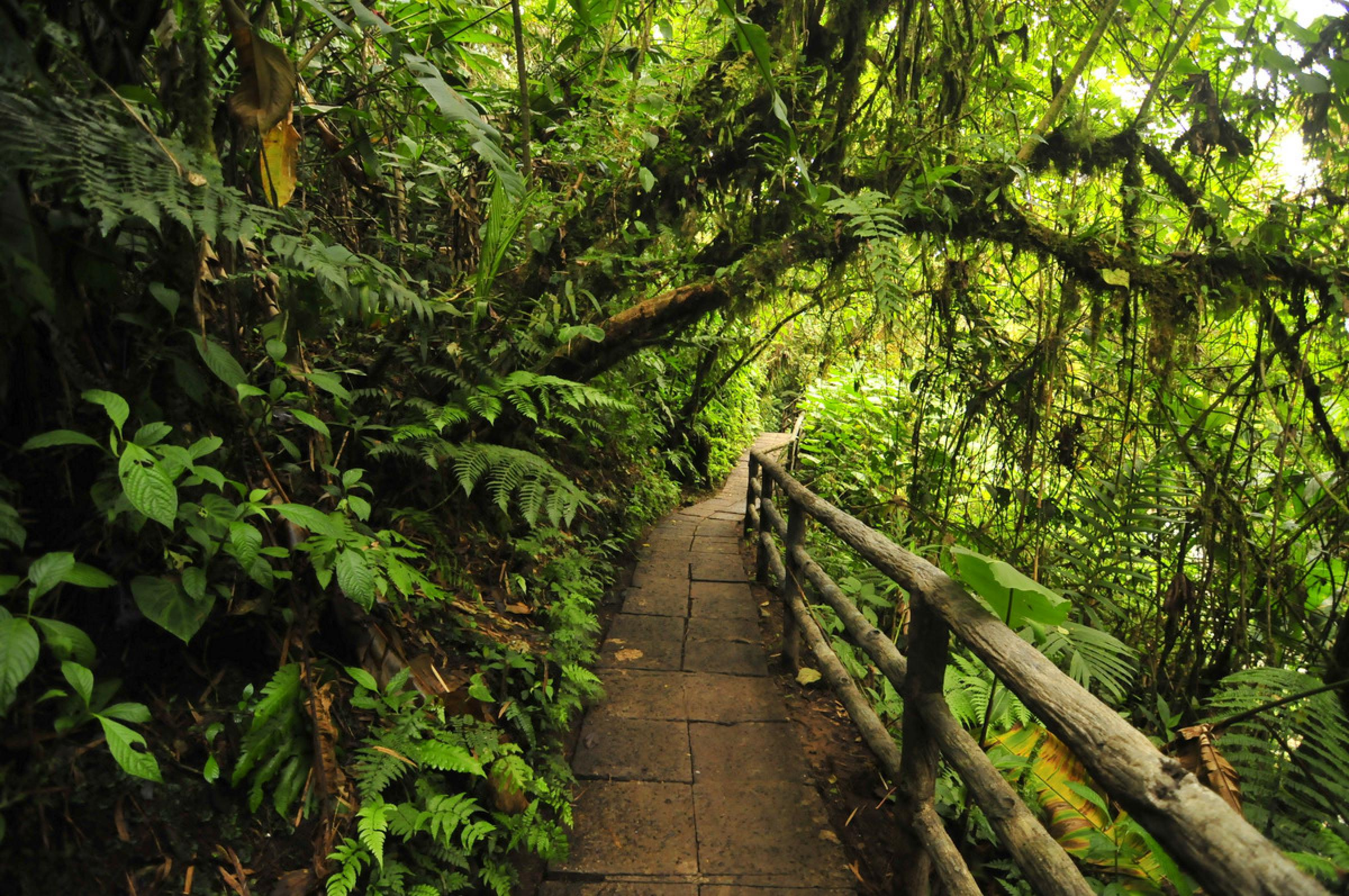 La Paz Waterfall Gardens Tour