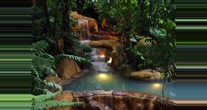 Costa Rica Los Perdidos Springs