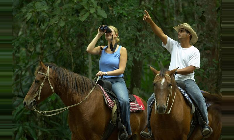 Mayan Heart Horseback Riding tour