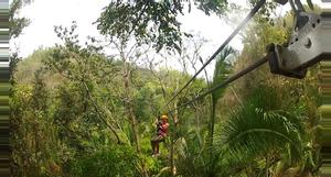 Belize Mayan Heart Zipline Tour