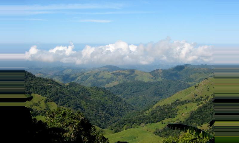 Tour de un Día en el Bosque Nuboso de Monteverde