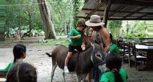 Costa Rica Mountains, Rivers and Horses
