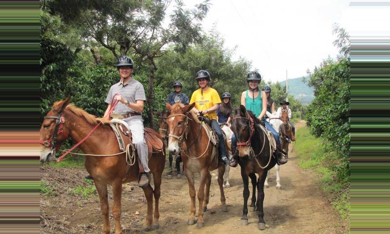 Tour on Mule