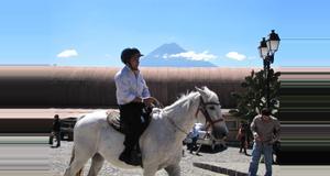 Guatemala Tour on Mule