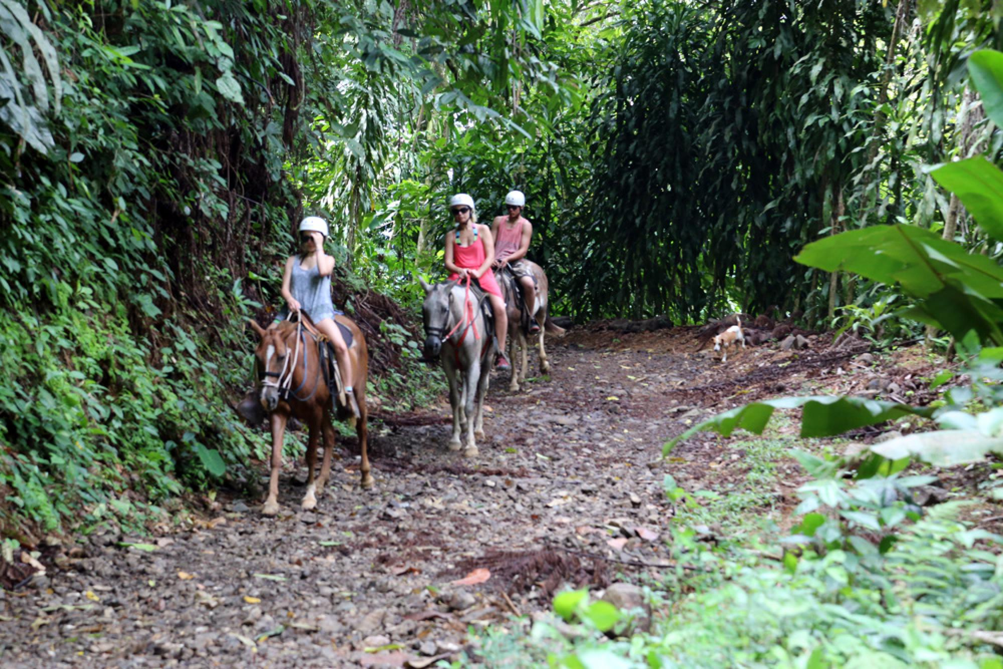 Mulguri Horseback Adventure