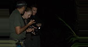 Costa Rica Night Walk Tirimbina Rainforest Center