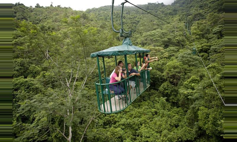 Pacific Rainforest Aerial Tram
