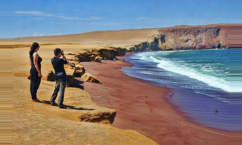 Tour Reserva Nacional Paracas