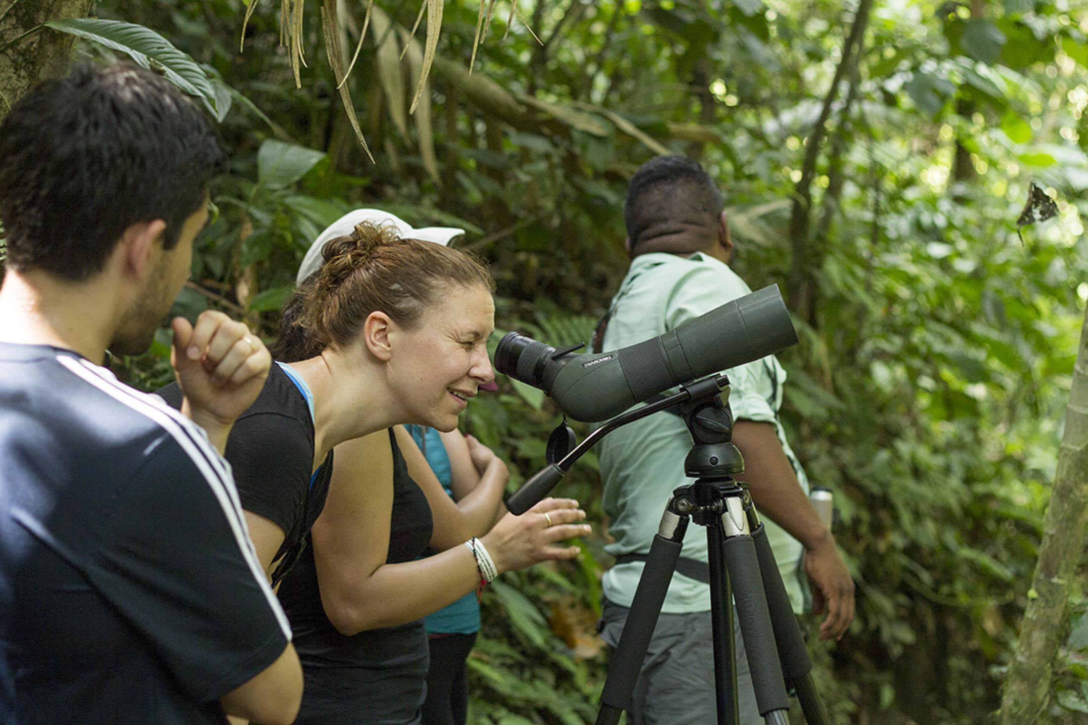 Tour de observación de aves en el bosque lluvioso