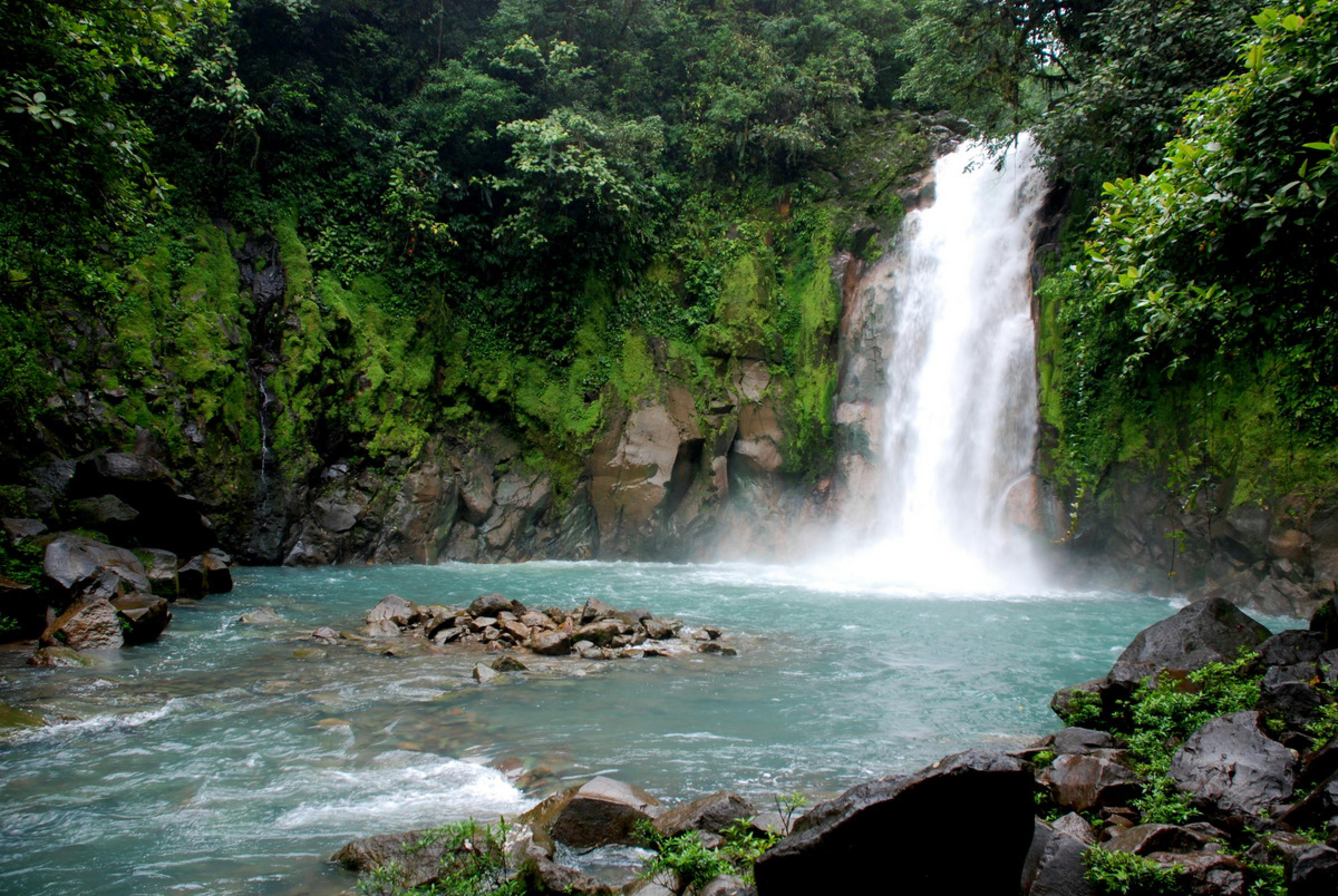 Rio Celeste & Tenorio Volcano Guided Rainforest Hike