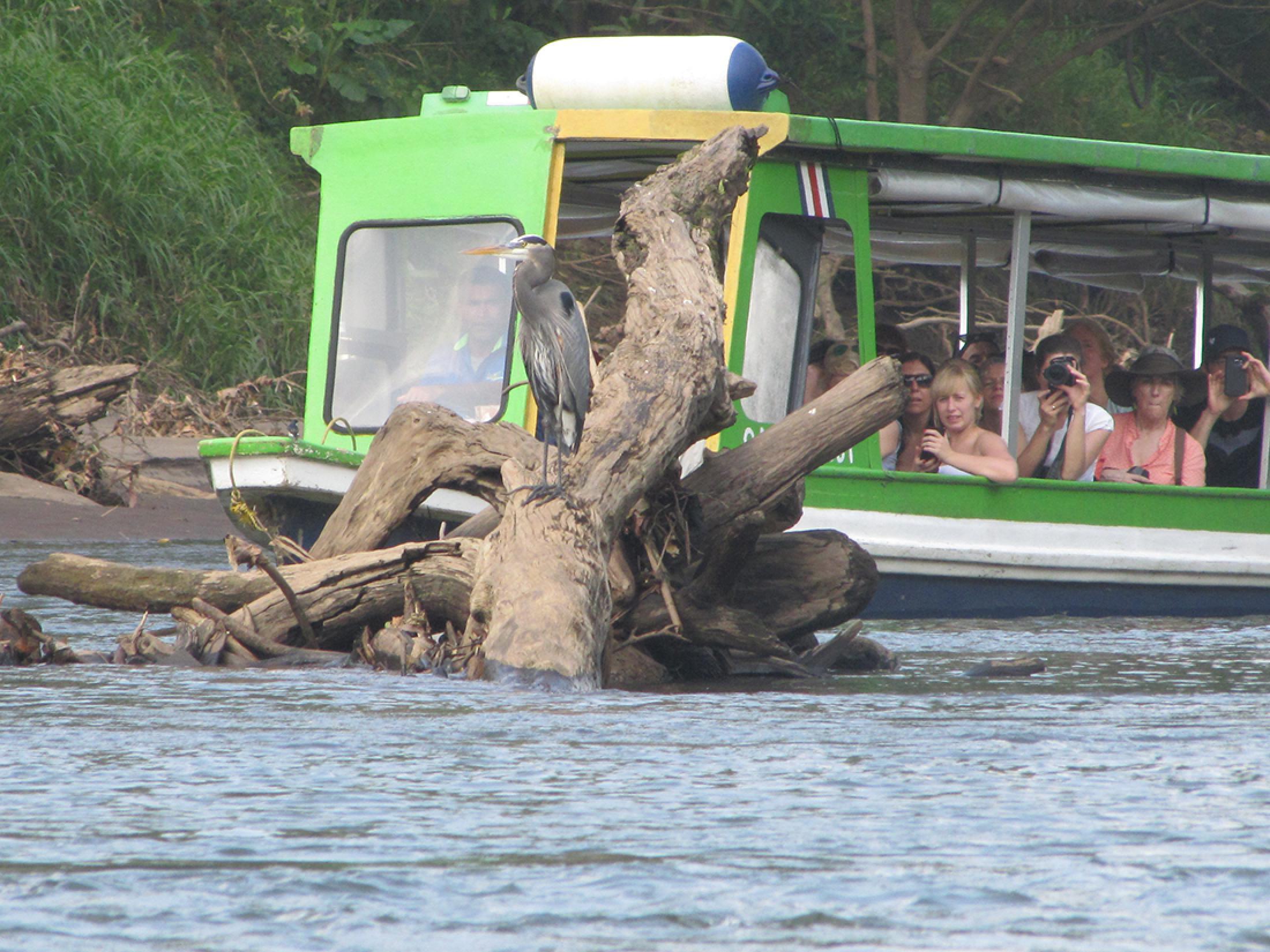 Tour Guiado Safari al Río Sarapiquí