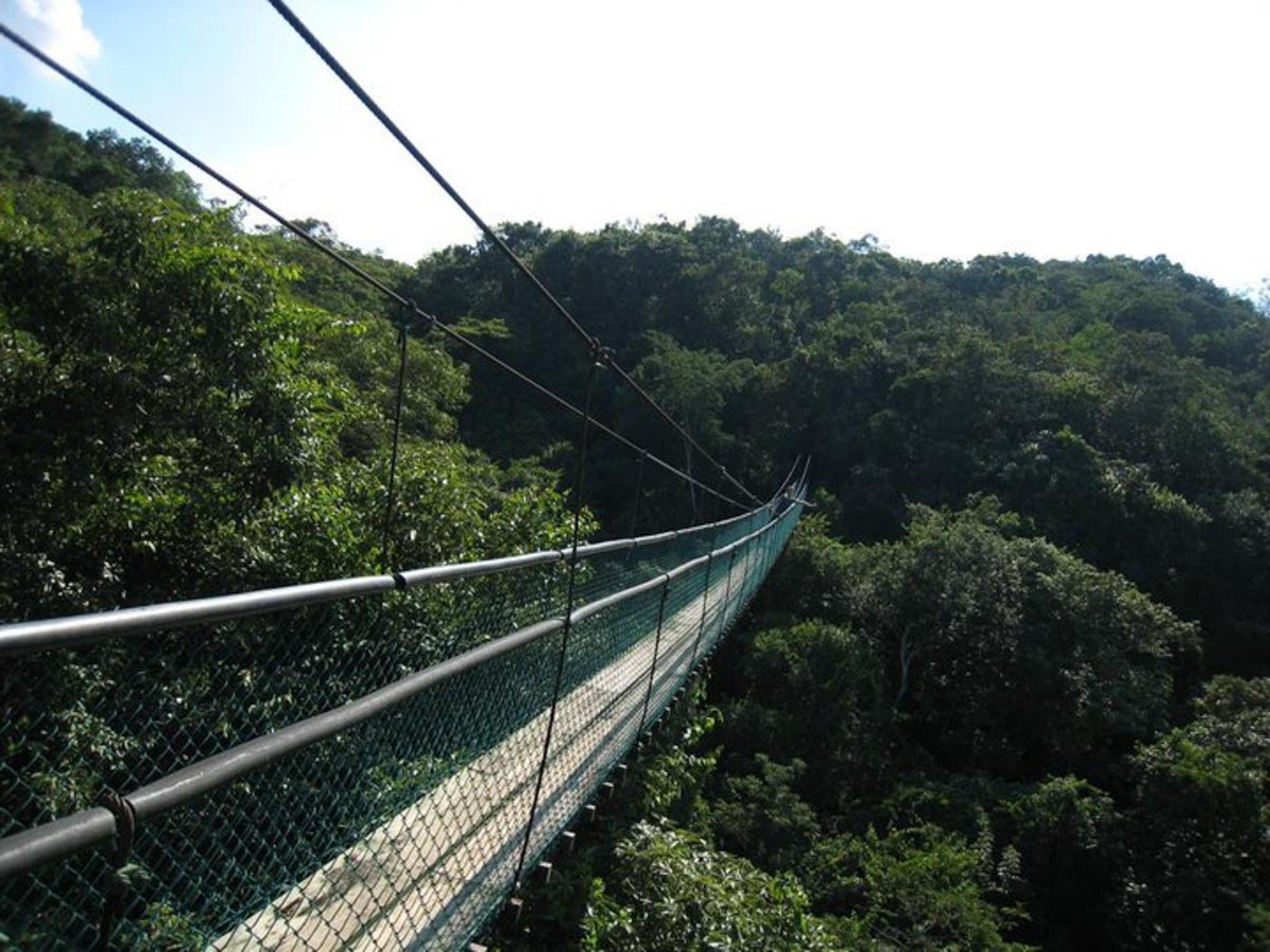 Sky Way Hanging Bridges Tour