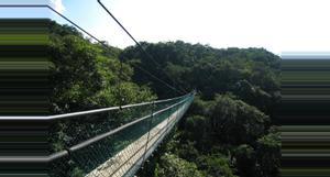 Guatemala Tour Sky Way Puentes Colgantes – INP