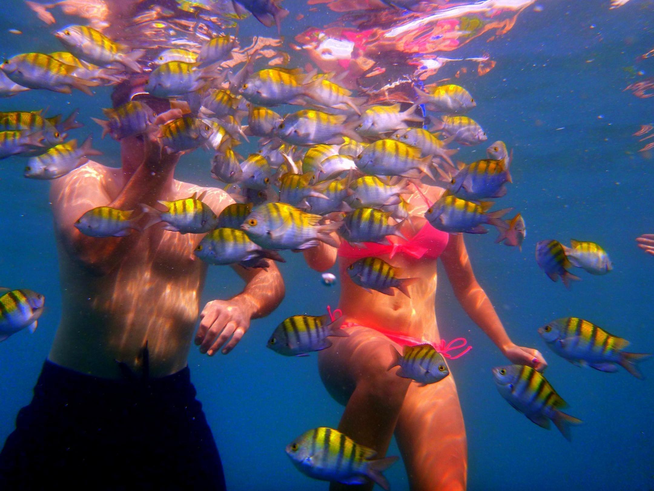 Snorkeling in Manuel Antonio