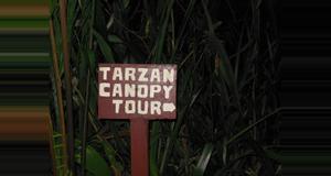 Guatemala Canopy Tour Tarzán