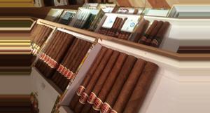 Cuba Tasting a Habano Cigar