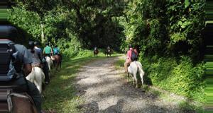 Costa Rica Arenal to Monteverde Horseback Tour (Lake Route)