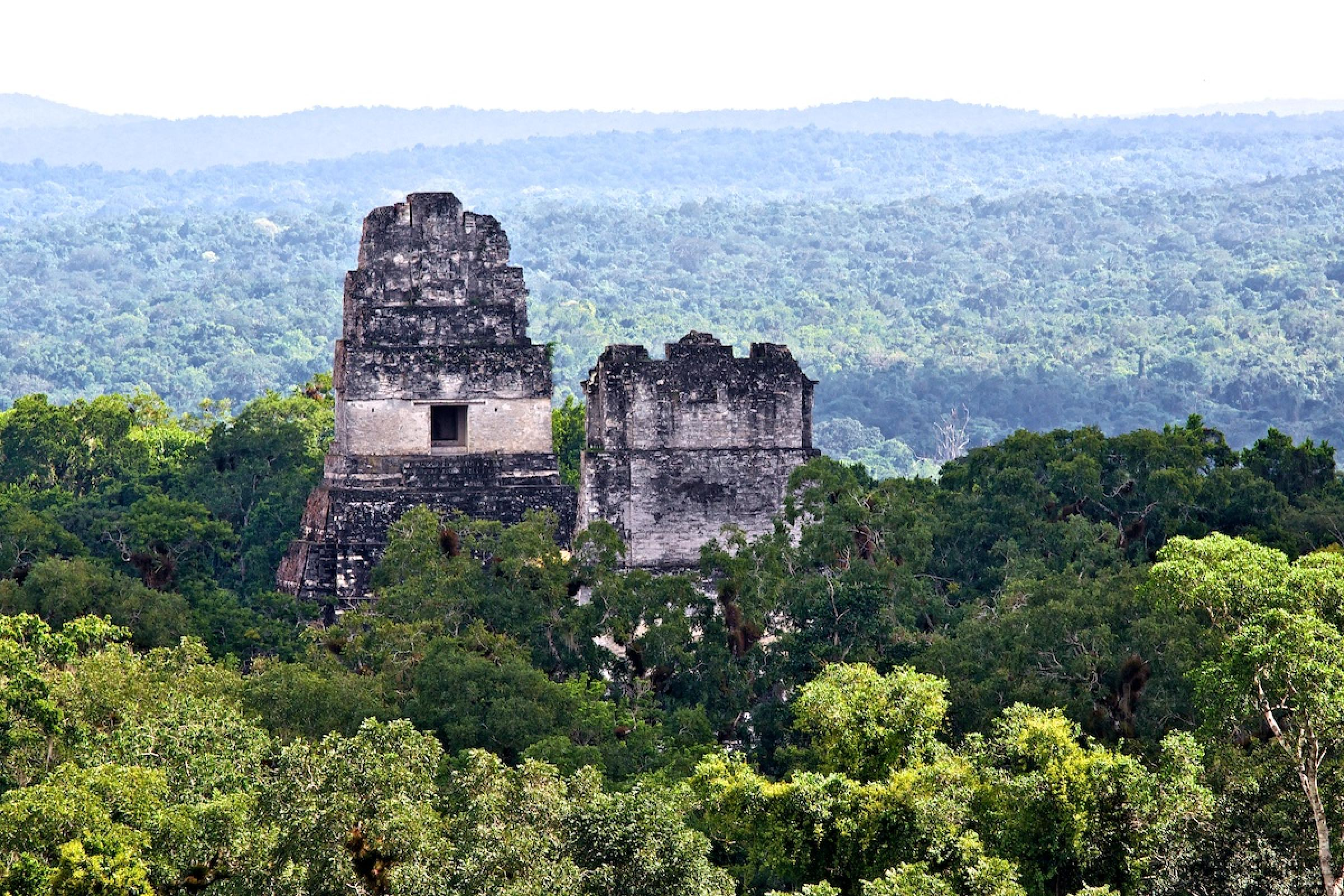 Tikal One Day From San Ignacio