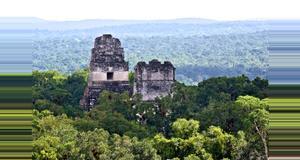 Belize Un día a Tikal desde San Ignacio