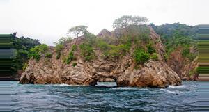 Costa Rica Experiencia en Isla Tortuga