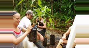 Costa Rica Volunteer in Sustainable Farming