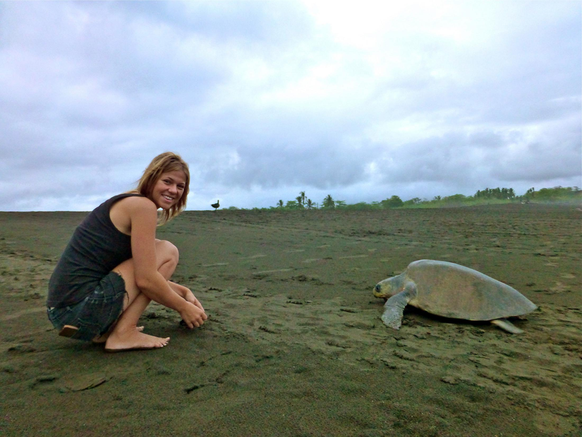 Volunteer in the Ostional Turtle Conservation