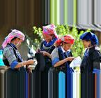Vietnam Indigenous Culture