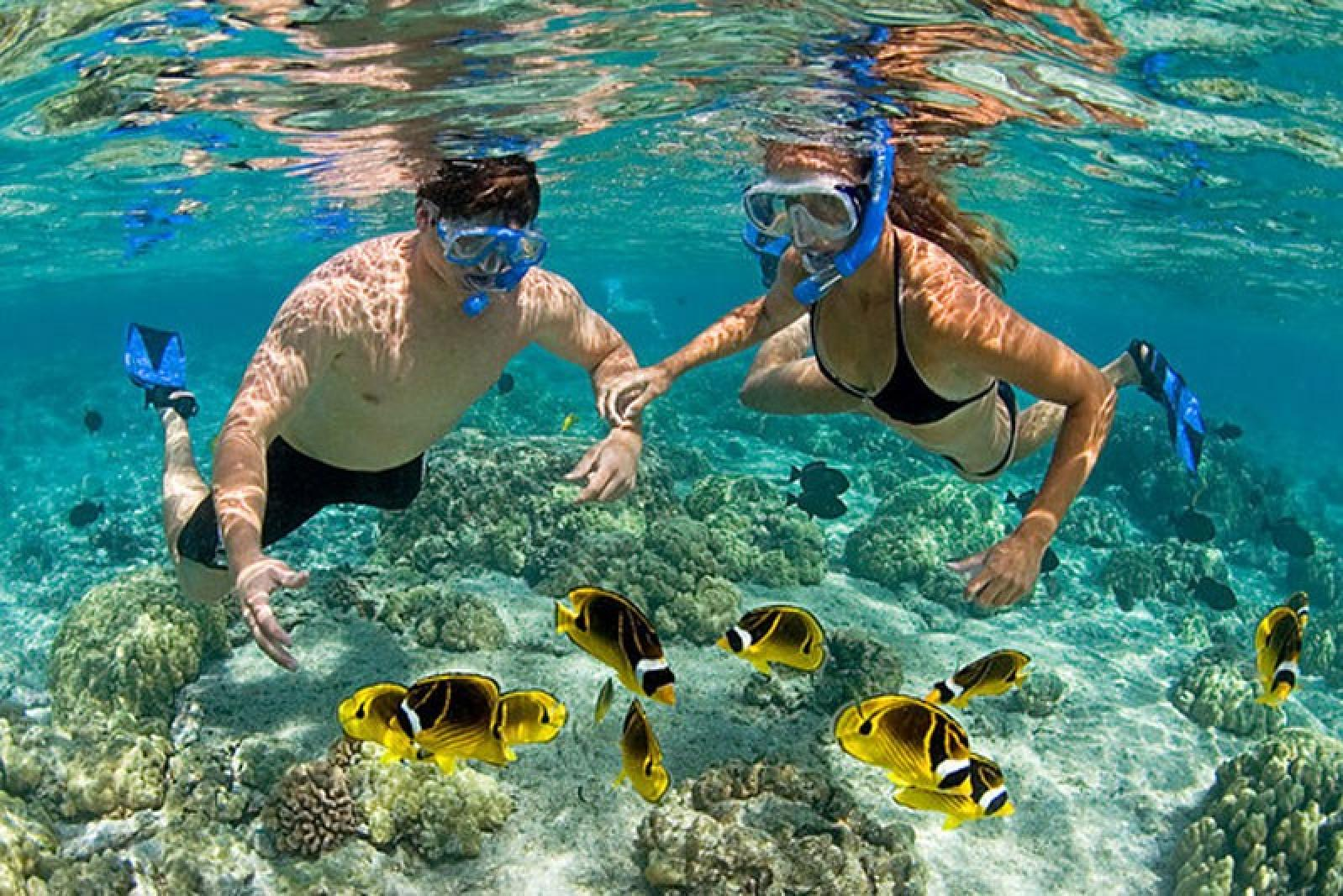 Islands and Snorkeling Tour