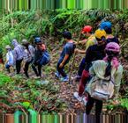 Vietnam Hiking