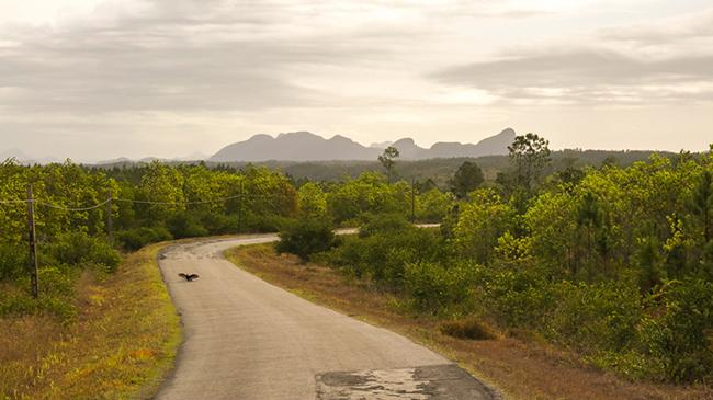 cuban road
