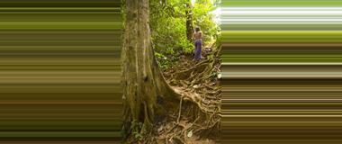 Belize Hiking Tours