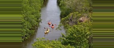 Belize Kayaking Tours in Belize