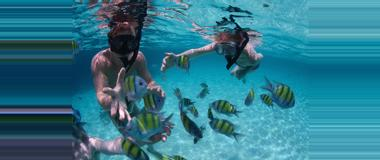 Belize Belize Snorkelling Tours