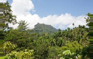Cuba National Park
