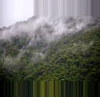 Ecuador Cloud Forests