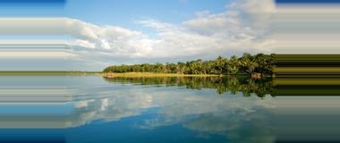 Guatemala Guatemala Mangrove Tours