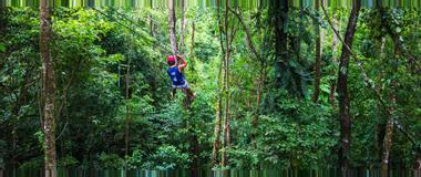 Panama Canopy Tours in Panama