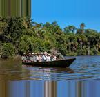 Peru Rainforests