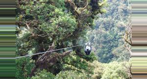 Costa Rica Ideas para unas Vacaciones con Aventuras